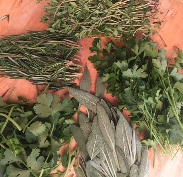 ariel view of various herbs
