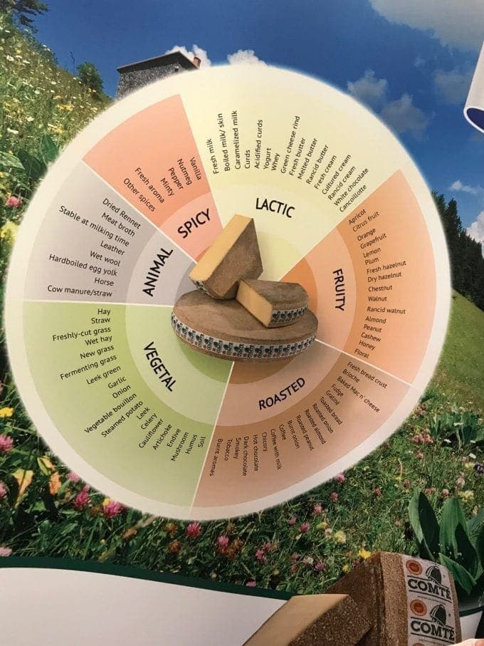 view of Comté flavour chart