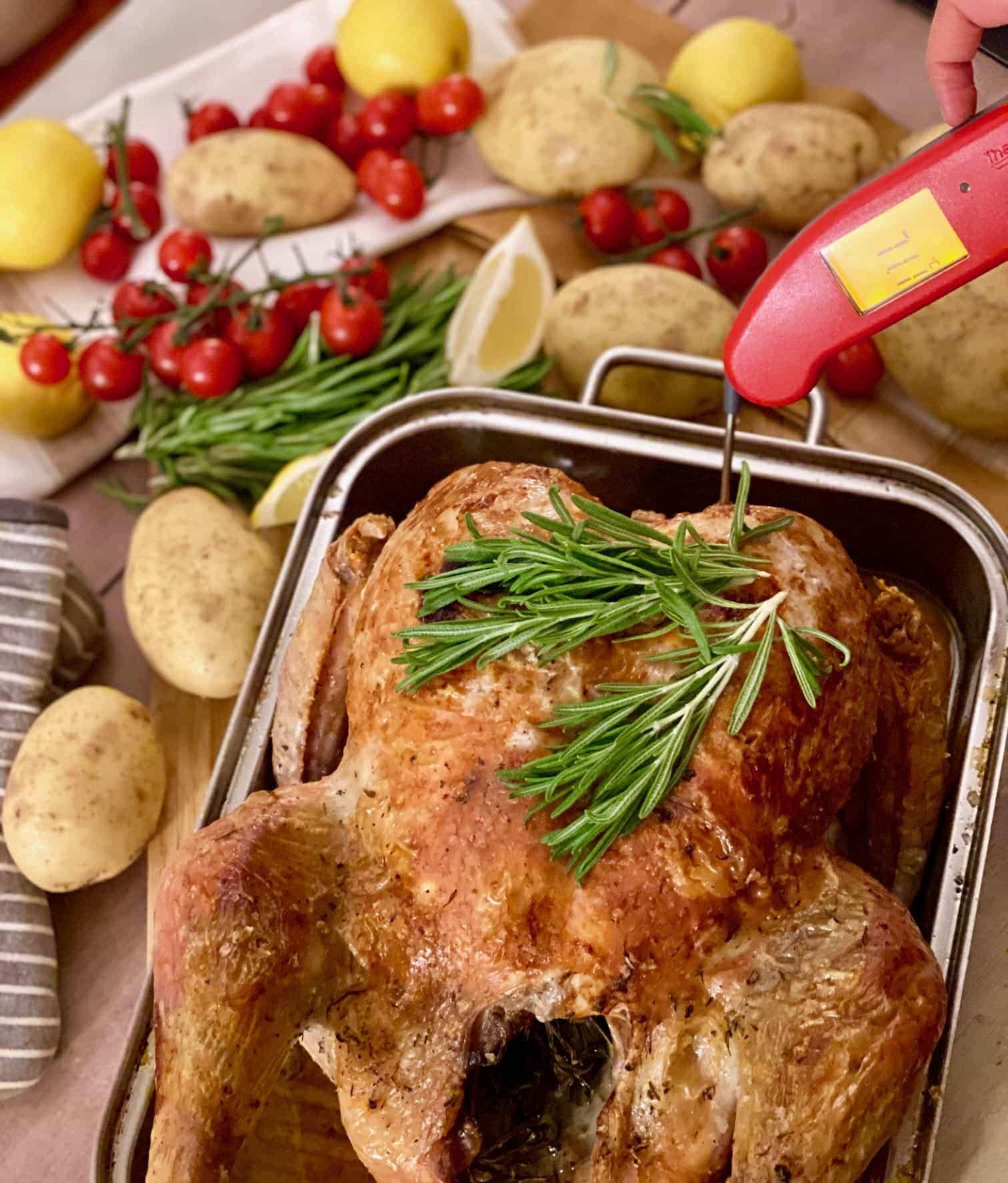 Measuring temperature of turkey resting in pan
